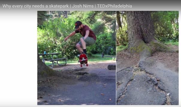 skatepark tree